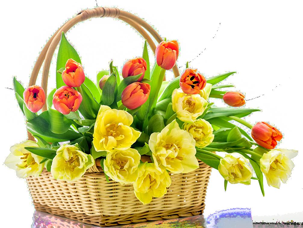 Tulips_Wicker_basket_489099.png